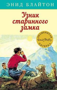 книга Узник старинного замка