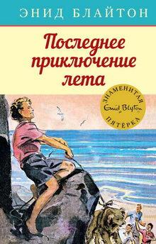 книга Последнее приключение лета